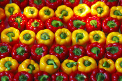 Red and yellow bell pepper Royalty Free Stock Photos
