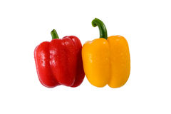 Red and Yellow Bell Peppers. Color peppers on white background royalty free stock photo