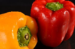 Red and Yellow bell peppers. Fresh bell peppers on a wet black background Royalty Free Stock Photos
