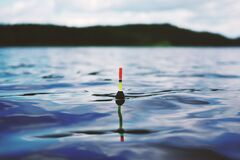 Red Yellow and Black Bouy on Body of Water during Daytime Stock Image