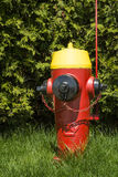 Red yellow and black Fire Hydrant Royalty Free Stock Photo