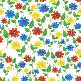 Red, yellow and blue flowers Royalty Free Stock Photos