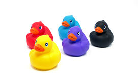 Red yellow blue pink and black bath ducks Stock Images