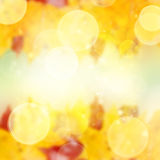 Red  and yellow bokeh background Stock Photos