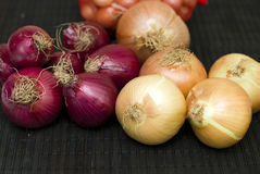 Red and yellow bulb onions Stock Photography
