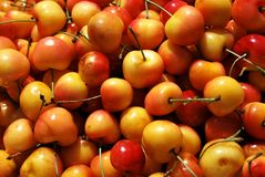 Red and yellow cherries texture Stock Images