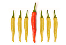 Red yellow chilli peppers isolated on white Stock Images