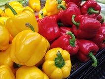 Red and yellow chillies. Soft spicy chillies, fresh veggies Stock Image