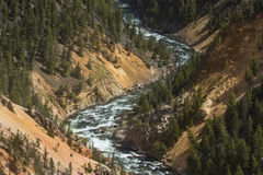Red and yellow cliffs of the Yellowstone River, Wyoming. Royalty Free Stock Images