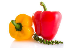 Red and yellow color of chili peppers isolated on white backgrou Royalty Free Stock Images