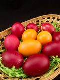 Red and yellow easter eggs in basket. On black Royalty Free Stock Photography