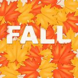 Red and Yellow Fall Leaves Pattern Royalty Free Stock Photography