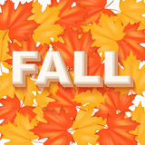 Red and Yellow Fall Leaves Pattern Stock Images