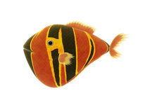 Red yellow fish Royalty Free Stock Photos