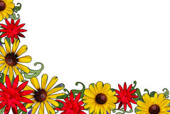 Red and Yellow Floral Border. A border of red rose and black eyed susan pictures cut into shapes Royalty Free Stock Photo