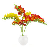Red and yellow flower in pot isolated on white stock illustration