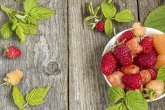 Red and yellow fresh raspberry on wooden background. Red and yellow fresh raspberry on wooden background Stock Images