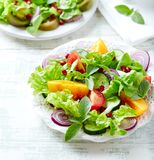 Red and yellow fresh tomato salad with pomegranate seeds stock images