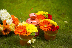 Red and yellow gerbera in brown flower pots on green grass Royalty Free Stock Photos