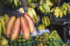 Red, yellow and green bananas hanging for sale at a market, Kand. Y, Sri Lanka Stock Photos