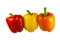 Red, yellow and green bell pepers in row Royalty Free Stock Photography