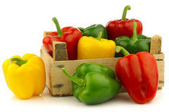 Red,yellow and green bell peppers (capsicum) Stock Image