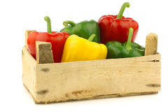Red,yellow and green bell peppers (capsicum) Royalty Free Stock Photography