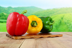 Red yellow green bell peppers on wooden and nature background. Royalty Free Stock Photo