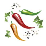 Red, yellow and green chili peppers. Green leaves. Peppercorns. Hand drawn on style pop art. Vector illustration,cartoon. Red, yellow and green chili peppers Royalty Free Stock Photos