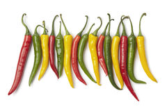 Red, yellow and green chili peppers in a row Stock Images