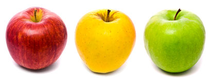 Red, yellow and green fresh apples Royalty Free Stock Images