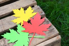 Red, yellow and green paper maple leaf on a wooden box on the grass. Hello Autumn concept. Copy space. Red, yellow and green paper maple leaf on a wooden box on royalty free stock images