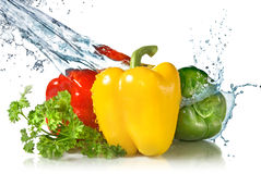 Red, yellow, green pepper and parsley with water Royalty Free Stock Photo