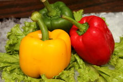 Red yellow and green pepper on vegetables. Group Red yellow and green pepper on vegetables Royalty Free Stock Images