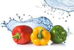 Red, yellow, green pepper with water splash Royalty Free Stock Images
