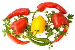 Red,yellow ,green peppers Royalty Free Stock Photography