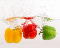 Red yellow green sweet pepper Stock Photography