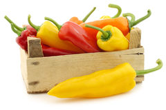 Red,yellow and green sweet peppers (capsicum)  Royalty Free Stock Photography