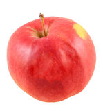 Red-yellow Jonathan apple, isolated Stock Photo