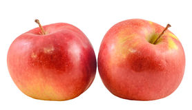 Red-yellow Jonathan apples, isolated Royalty Free Stock Photo