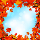 Red and yellow leaves against blue sky. EPS 8 Royalty Free Stock Photos