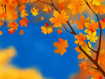 Red and yellow leaves against blue sky. EPS 8 Stock Images
