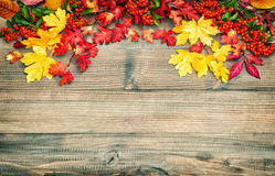 Red yellow leaves berries Autumn background. Vintage style. Red yellow leaves and berries. Autumn background. Vintage style toned picture Royalty Free Stock Photography