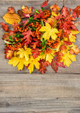 Red yellow leaves and berries Autumn composition. Red yellow leaves and berries on rustic wooden background. Autumn composition. Vintage style toned picture Stock Photo