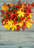 Red and yellow leaves on wooden texture. Autumn background. Red yellow leaves and berries on rustic wooden background. Autumn composition. Vintage style toned Royalty Free Stock Photos