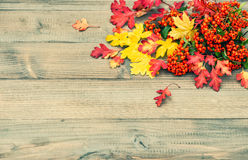 Red and yellow leaves on wooden texture. Autumn background. Red and yellow leaves on rustic wooden texture. Autumn background. Vintage toned picture Stock Image