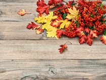 Red and yellow leaves on wooden texture. Autumn retro. Red and yellow leaves on rustic wooden texture. Autumn background. Retro style colored photo Royalty Free Stock Image