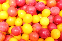 Red and yellow mirabelle as background Stock Photography
