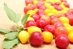 Red and yellow mirabelle and green leaf on jute canvas Royalty Free Stock Photography