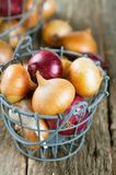 red and yellow onion Royalty Free Stock Image